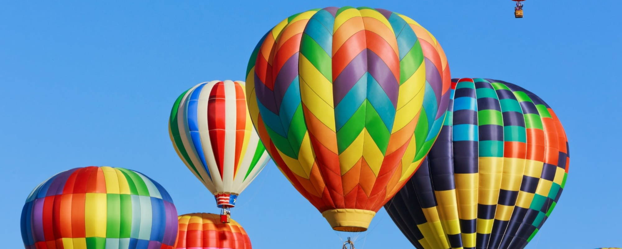 hot air balloons in multiple bright colours